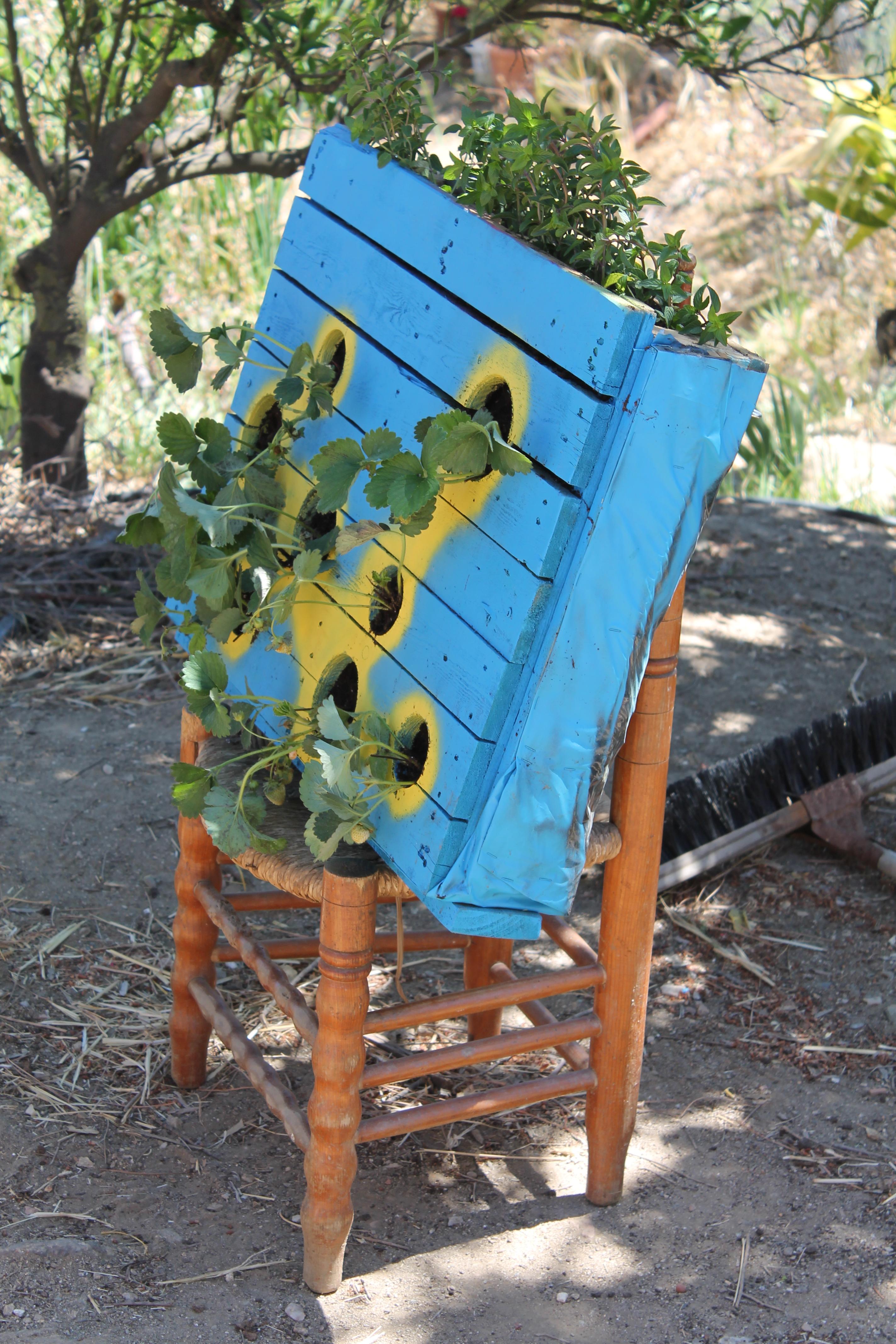 Taller de reciclaje creativo con pal s en jaulas abiertas el jueves 29 de octubre ecoluciona - Reciclaje de pales ...